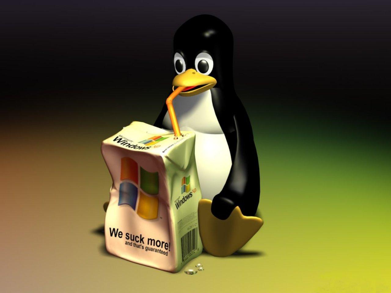 winxp-linux
